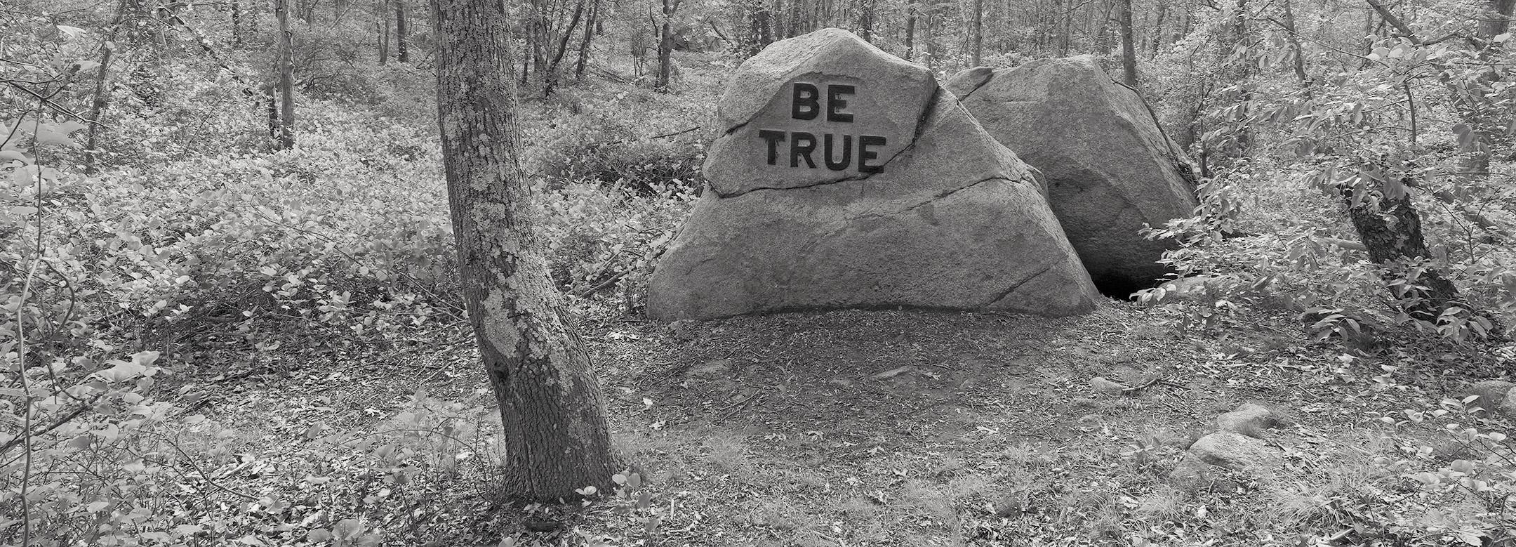 Ted Hendrickson, Dogtown Be True