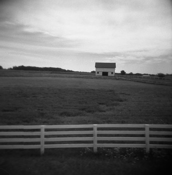 Horse Farm - southern Wisconsin