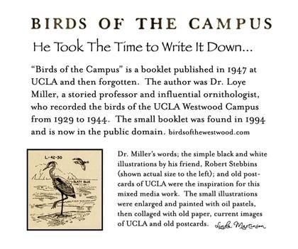 Birds of Campus Artist's Statement
