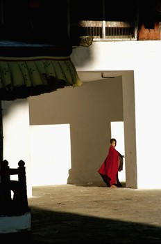 Young Monk in Shadows, Punakha Dzong, Bhutan