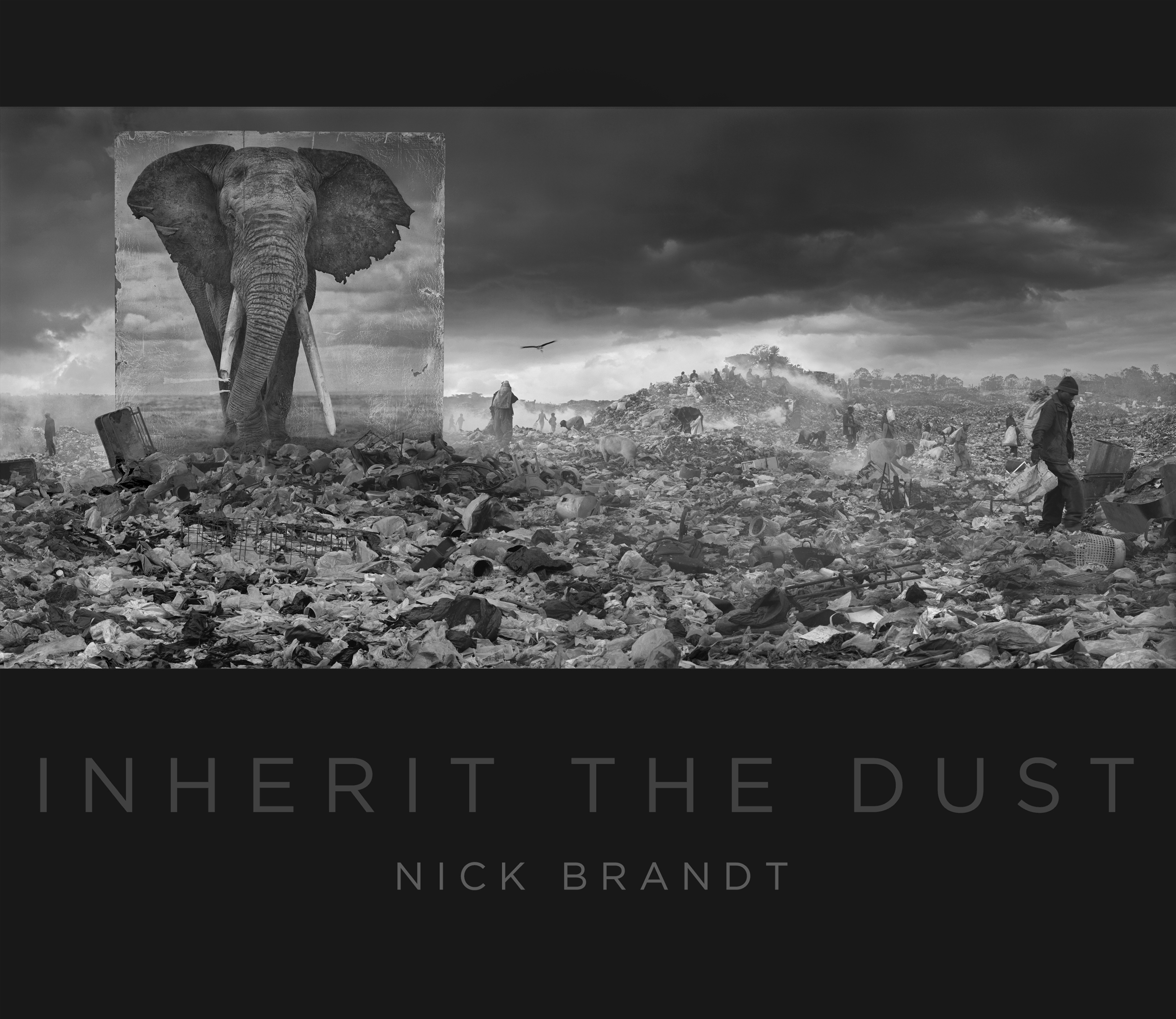 Inherit the Dust dust jacket