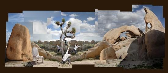 Shaping the Joshua Tree