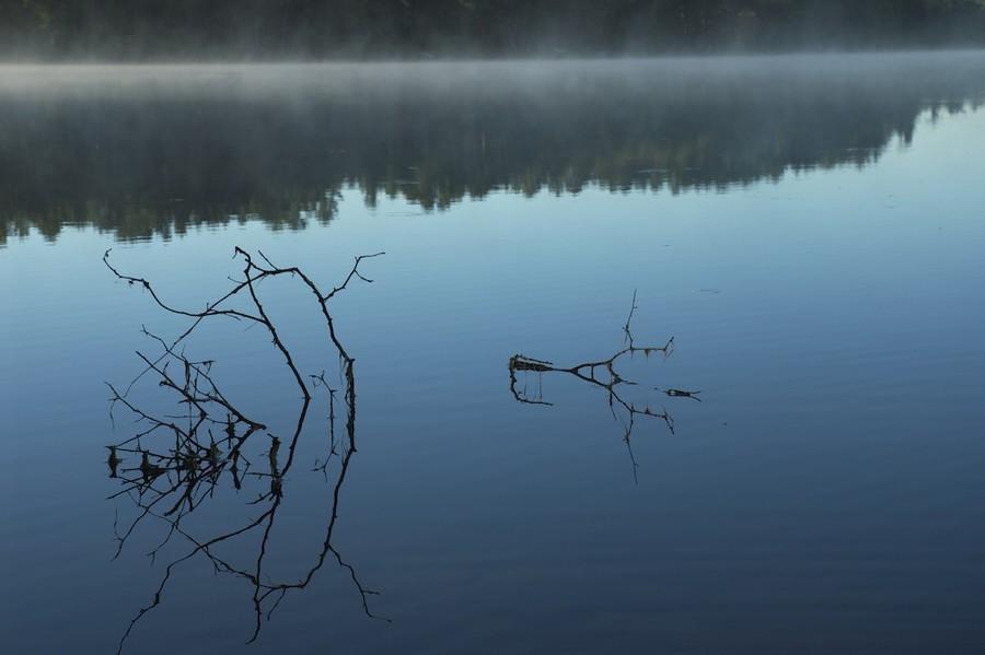 Sticks, Horizontal, Lake Tahkodah