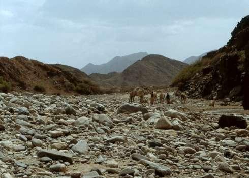 Beja Nomads, Red Sea Hills, Sudan