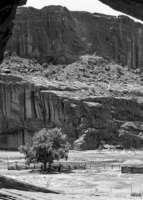 Home as Universe, Navajo Nation
