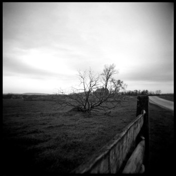 A Distant Homestead