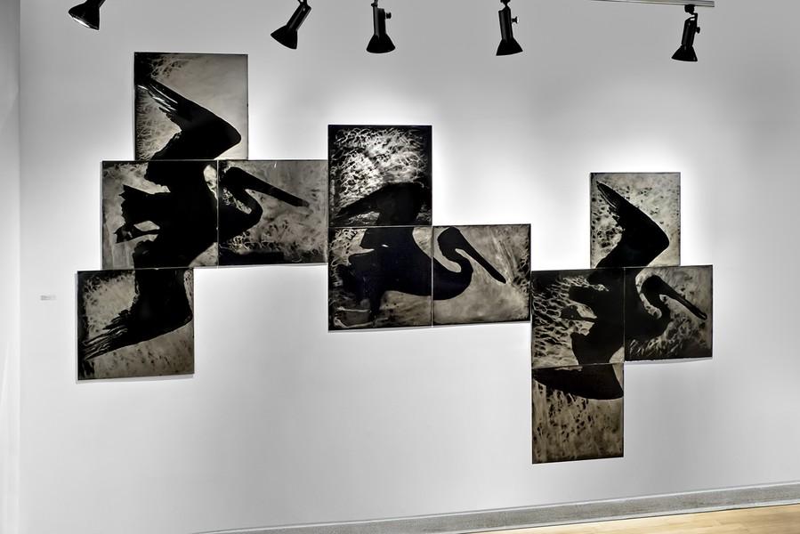 Installation Schneider Gallery