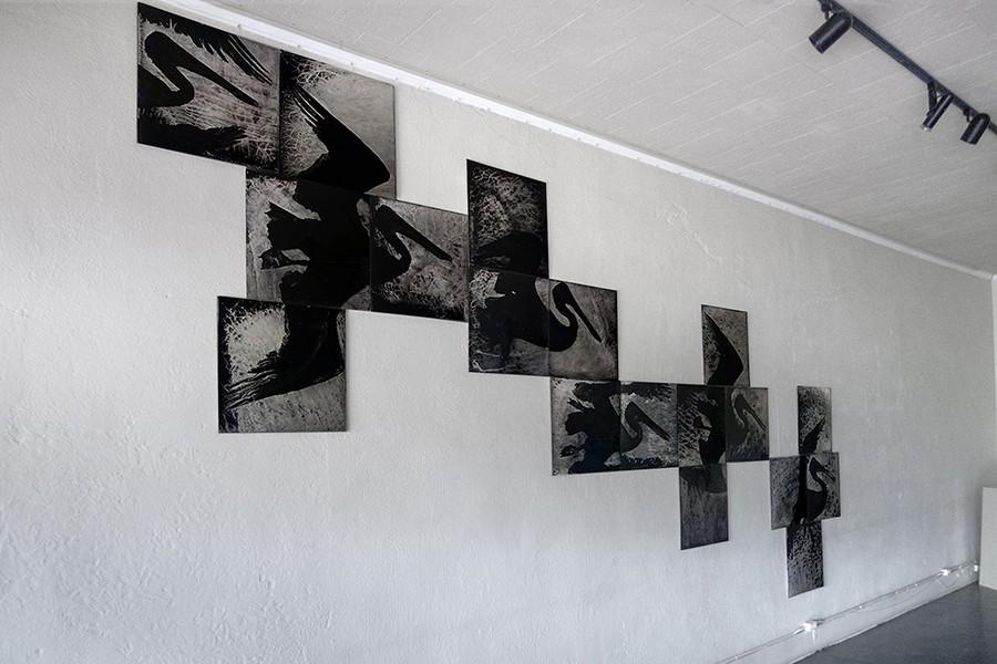 Flight at Wiljax Gallery