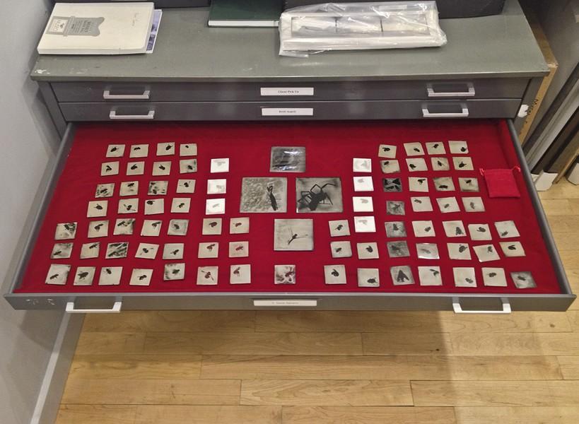 Installation at Gallery Kayafas