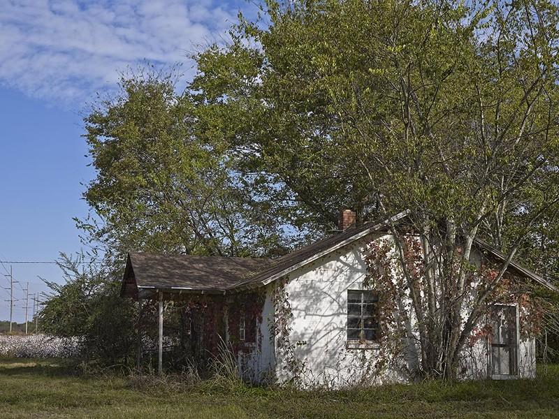 House, cotton field, norht of Sweden, SC