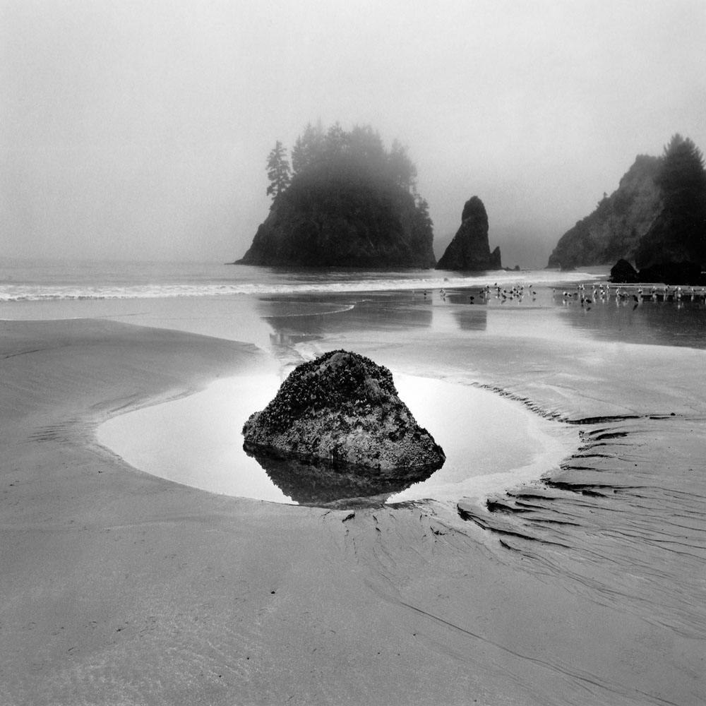 Linda Fitch, Trinidad Beach, Study 1, California