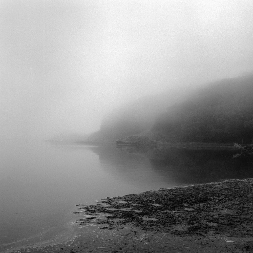Linda Fitch, Morning Fog, Tomales Bay, California