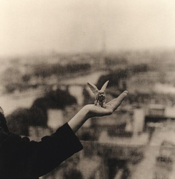 Gargoyle, Paris