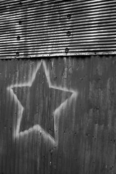 Star Sighting