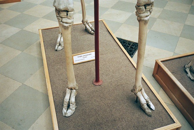Untitled, 2003-124-32