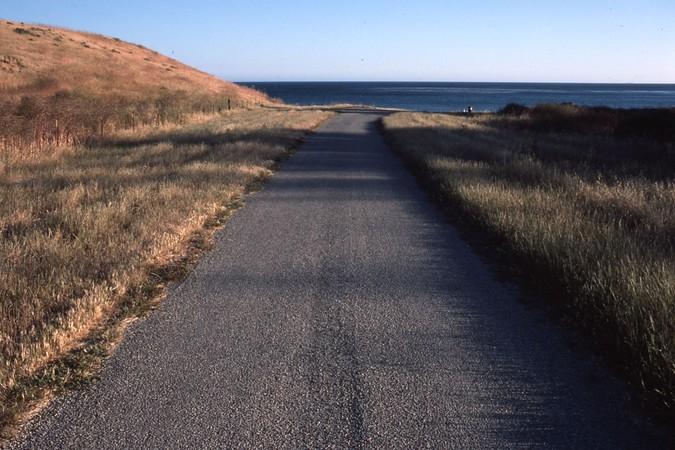 Access to Santa Anita