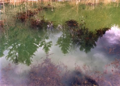 Fish Pond, Barnet, VT