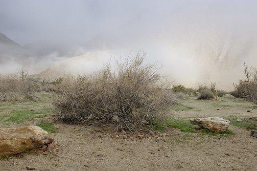 Campground, Anza Borrego Desert State Park