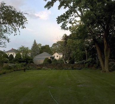 Dusk, late summer, my backyard, Auburndale, MA