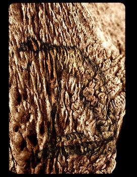 Whalebone Figure