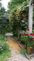 A Town Garden