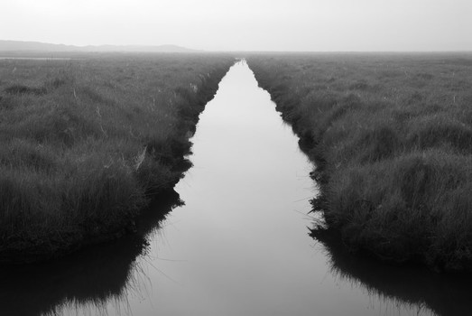 Salthouse Marshes, Norfolk, England. 2007