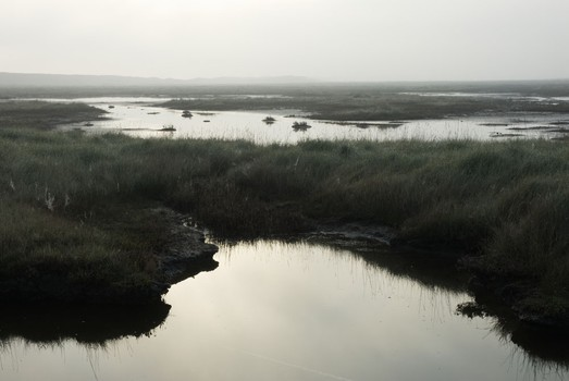 Salthouse Marshes. Norfolk, England. 2007