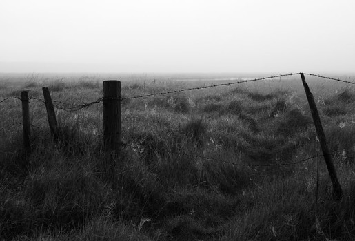 Fence. Salthouse Marshes, Norfolk, England. 2007