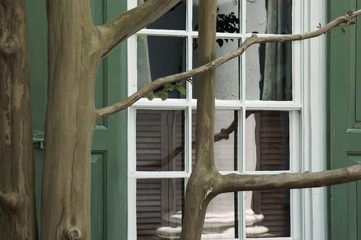 Reflections. Charleston, South Carolina, USA. 2005