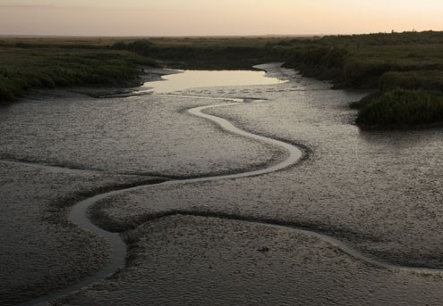 Channel Forms. North Norfolk, England. 2007
