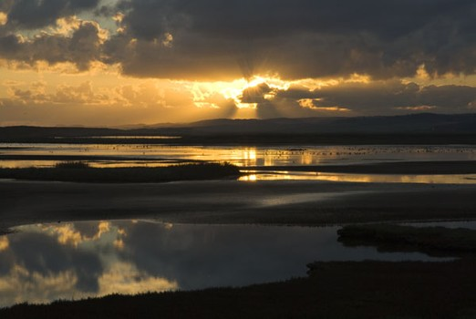 Arnold's Marsh Sunrise, Norfolk, England. 2007