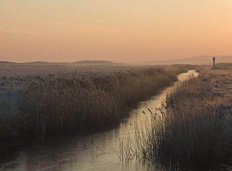 Salthouse Marsh, Dawn. Norfolk, England 2008