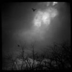 Flying Souls