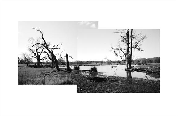 Industrial wetland near St. Francesville, LA