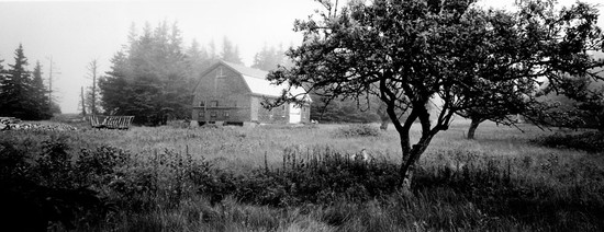 Howard Barn and Orchard