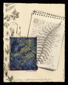 Light Danced Through Ferns