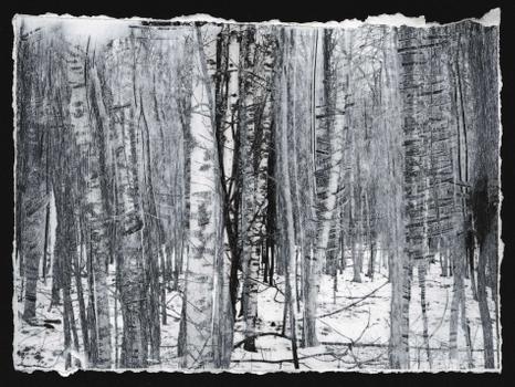 Birches, I