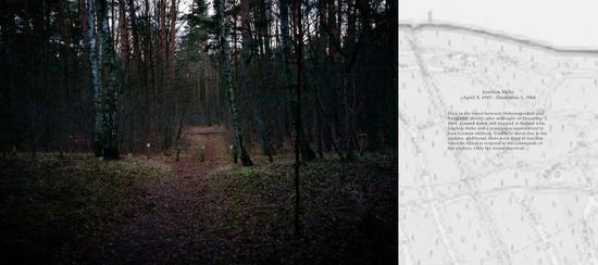 German Youth Forest, Hohen Neuendorf & Bergfelde