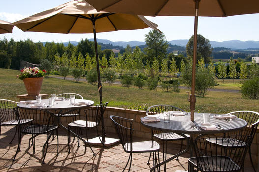 Canas Feast Winery