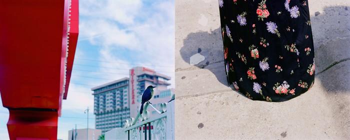 Bird/Skirt, 2004
