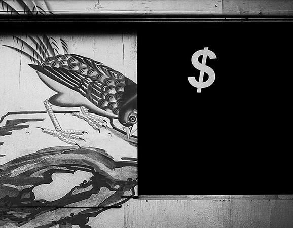 Wallpaper/Dollar Store Window, 2015