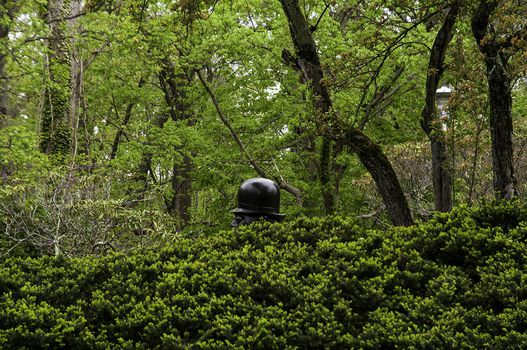BOTERO IN THE BUSHES