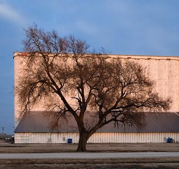 Tree and Grain Elevator