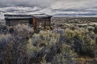 Wyoming Shelter