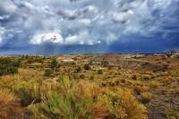 Jicarilla Apache Rain