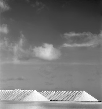 Salt Harvest: Bonaire