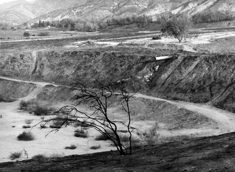 After the Old Fire,. San Bernardino, 2003