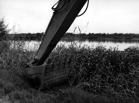 Prado Wetlands, 2002