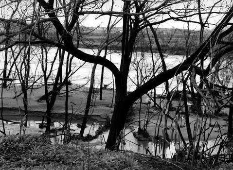 Santa Ana River, Riverside, 1993