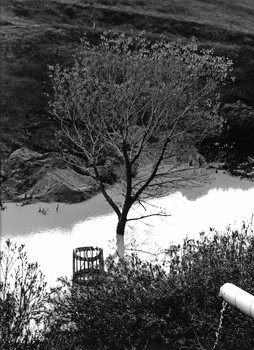 Below Prado Dam, 1992
